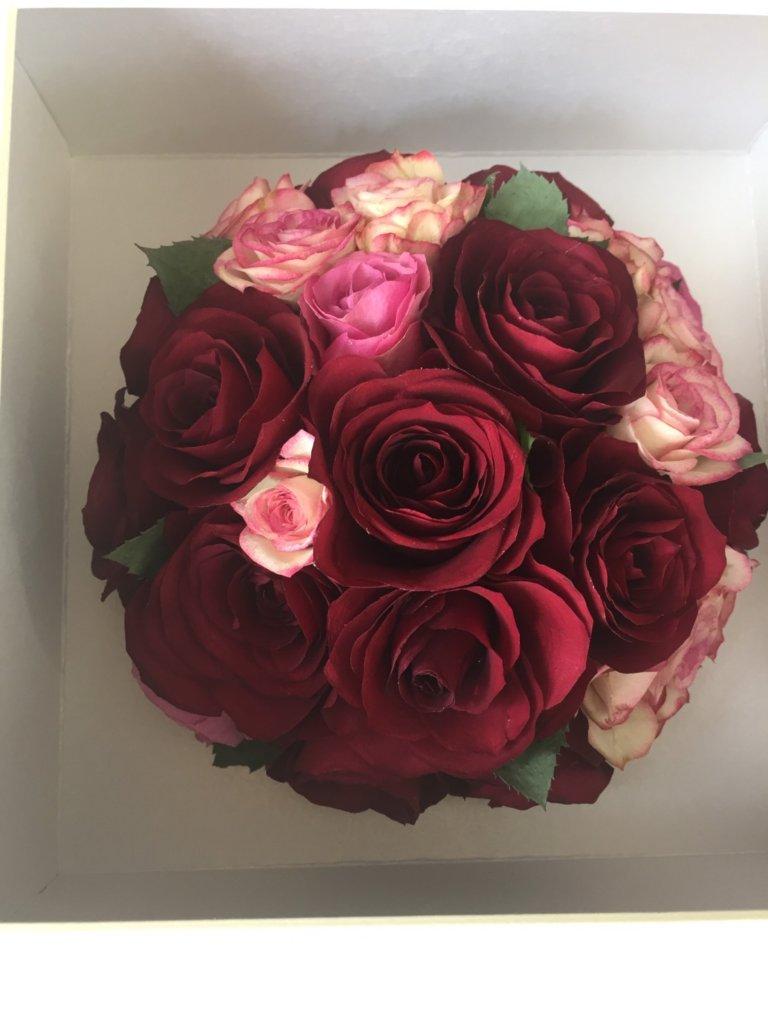 SCホワイトボックスの赤薔薇