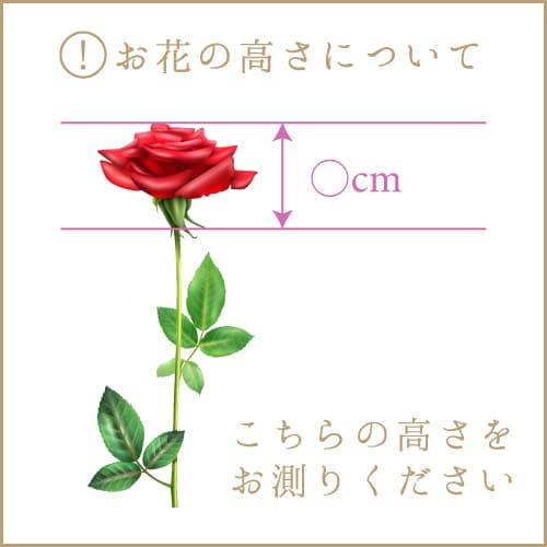 お花の高さについて